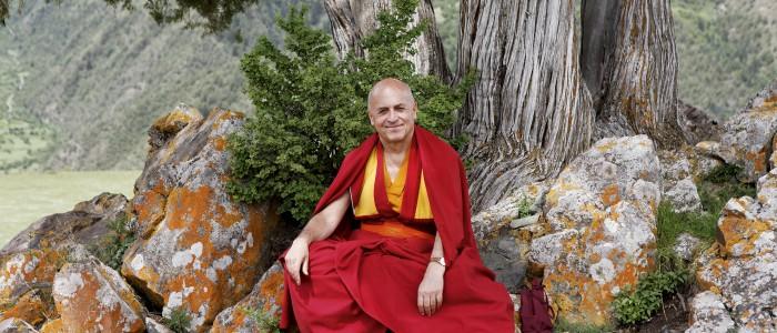 En Juin 1985, Dilgo Khyentsé Rinpotché (1910-1991), l'un des plus grands maîtres du Bouddhisme tibétain, revisita le Tibet, après trente ans passé en exil. Par un intriguant jeu de miroirs, vingt-cinq ans plus tard, en Juin 2010, le jeune lama reconnu comme sa réincarnation, visite à son tour les même lieux au Tibet oriental. Il est accueilli avec la même ferveur que son prédécesseur. Il est accompagné par Shéchèn Rabjam Rinpotché, petit-fils de Khyentsé Rinpotché, et abbé du monastére de Shéchèn, qui était, lui aussi, du premier voyage.