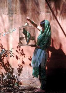 L'Inde dans un miroir - Editions Hozhoni3